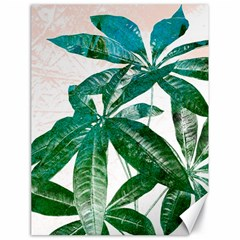 Pachira Leaves  Canvas 18  X 24