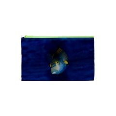 Fish Blue Animal Water Nature Cosmetic Bag (xs) by Amaryn4rt