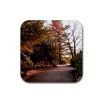 Leo Harrison St Pk  Path 2 Rubber Coaster (Square)