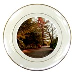 Leo Harrison St Pk  Path 2 Porcelain Plate