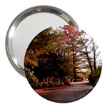 Leo Harrison St Pk  Path 2 3  Handbag Mirror
