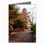 Overlook Path - Leonard Harris State Park - Pennsylvania Grand Canyon - Ave Hurley - Greeting Cards (Pkg of 8)