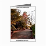 Overlook Path - Leonard Harris State Park - Pennsylvania Grand Canyon - Ave Hurley - Mini Greeting Cards (Pkg of 8)