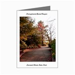 Overlook Path - Leonard Harris State Park - Pennsylvania Grand Canyon - Ave Hurley - Mini Greeting Card