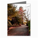 Overlook Path - Leonard Harris State Park - Pennsylvania Grand Canyon - Ave Hurley - Greeting Card