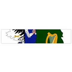 Flag Map Of Provinces Of Ireland  Flano Scarf (small) by abbeyz71