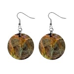 Slate Stone Fractal Earth Tone 1  Button Earrings