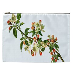 Apple Branch Deciduous Fruit Cosmetic Bag (xxl)  by Nexatart