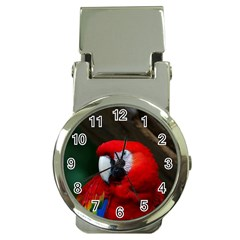 Scarlet Macaw Bird Money Clip Watches