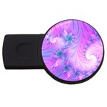 Delicate USB Flash Drive Round (2 GB)