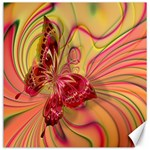 Arrangement Butterfly Aesthetics Canvas 12  x 12