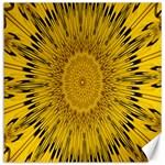 Pattern Petals Pipes Plants Canvas 12  x 12