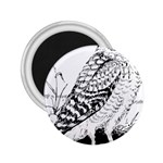 Animal Bird Forest Nature Owl 2.25  Magnets