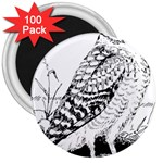 Animal Bird Forest Nature Owl 3  Magnets (100 pack)