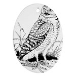 Animal Bird Forest Nature Owl Oval Ornament (Two Sides)