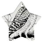 Animal Bird Forest Nature Owl Star Ornament (Two Sides)
