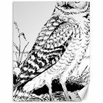 Animal Bird Forest Nature Owl Canvas 12  x 16