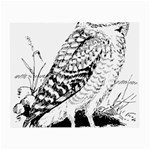Animal Bird Forest Nature Owl Small Glasses Cloth (2-Side)