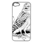 Animal Bird Forest Nature Owl Apple iPhone 5 Case (Silver)
