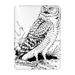 Animal Bird Forest Nature Owl Galaxy Note 1