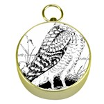 Animal Bird Forest Nature Owl Gold Compasses
