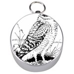 Animal Bird Forest Nature Owl Silver Compasses