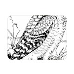 Animal Bird Forest Nature Owl Double Sided Flano Blanket (Mini)
