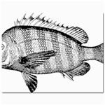 Animal Fish Ocean Sea Jewelry Bags