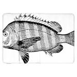 Animal Fish Ocean Sea Samsung Galaxy Tab 8.9  P7300 Flip Case