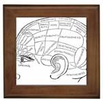 Brain Chart Diagram Face Fringe Framed Tiles