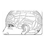 Brain Chart Diagram Face Fringe Magnet (Rectangular)