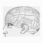 Brain Chart Diagram Face Fringe Small Glasses Cloth