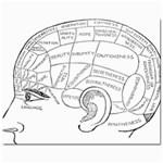 Brain Chart Diagram Face Fringe Mini Button Earrings