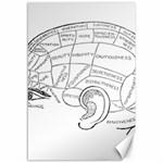 Brain Chart Diagram Face Fringe Canvas 12  x 18