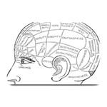 Brain Chart Diagram Face Fringe Plate Mats