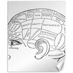 Brain Chart Diagram Face Fringe Canvas 11  x 14
