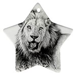 Lion Wildlife Art And Illustration Pencil Star Ornament (Two Sides)