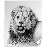 Lion Wildlife Art And Illustration Pencil Canvas 16  x 20