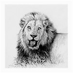 Lion Wildlife Art And Illustration Pencil Medium Glasses Cloth (2-Side)