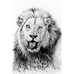 Lion Wildlife Art And Illustration Pencil 5.5  x 8.5  Notebooks
