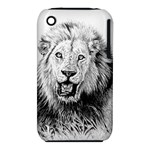 Lion Wildlife Art And Illustration Pencil iPhone 3S/3GS