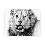 Lion Wildlife Art And Illustration Pencil Double Sided Flano Blanket (Mini)