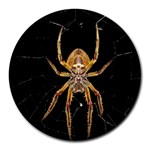 Insect Macro Spider Colombia Round Mousepads