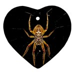 Insect Macro Spider Colombia Ornament (Heart)