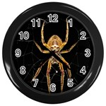 Insect Macro Spider Colombia Wall Clocks (Black)