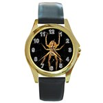 Insect Macro Spider Colombia Round Gold Metal Watch