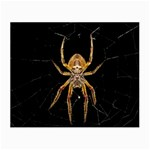 Insect Macro Spider Colombia Small Glasses Cloth (2-Side)