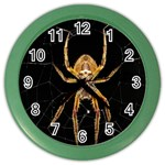 Insect Macro Spider Colombia Color Wall Clocks