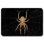 Insect Macro Spider Colombia Large Doormat