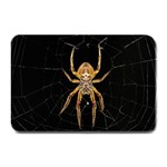 Insect Macro Spider Colombia Plate Mats